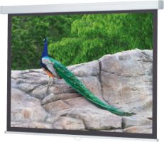 Spalluto WS P ProScreen-Rollo AR 16:9 230x129 BE/BL 1,0 Gain